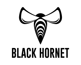 Логотип черный шершень