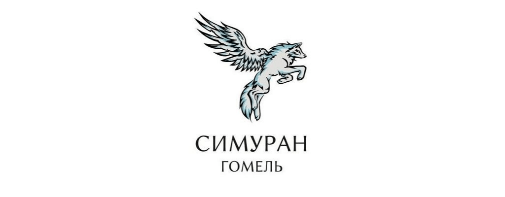Почти хороший логотип Поисково-спасательного отряда